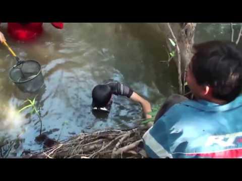Travel - P25, 2012-13 Nrhiav Ntses noj, Ua Si raws hav dej qhuav (HD)