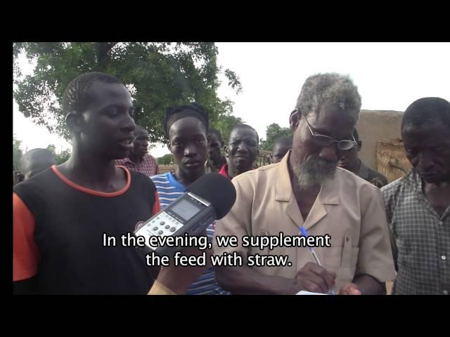 FarmQuest - Reality Radio in Mali: Meet Fanto