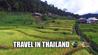 SUAB HMONG TRAVEL:  View Phu Chi Dao, Doi Inthanon, Khun-Glang, and Lao Ou in Thailand