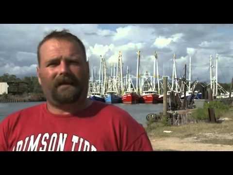 "Fisherman ""Shrimp Turned Rubber Fish Lost Slime Smell and Taste"""