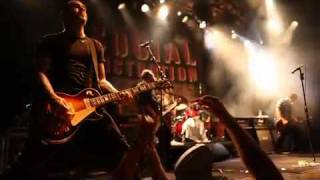 Watch Social Distortion The Creeps I Just Wanna Give You video