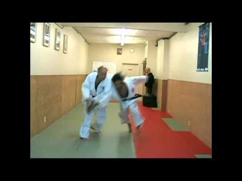 Miyamaryu Jujutsu - Single & Double Hand Defense Techniques Image 1