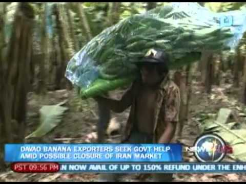 NewsLife: Davao banana exporters seek gov't help amid possible closure of Iran market