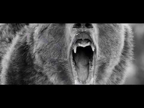 Zatox - Animals (Official VideoClip)
