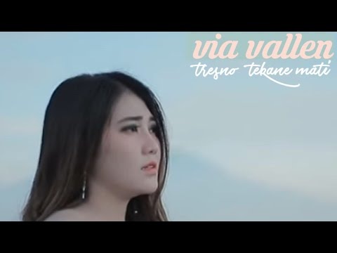 Download VIA VALLEN - Tresno tekane mati terbaru 2019 Mp4 baru