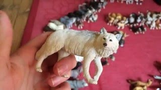 Model Animal Collection Tour 5/1/2016 Part 1