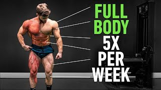 Full Body 5x Per Week: Why High Frequency Training Is So Effective