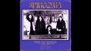 Watch Spirogyra Where Theres A Will Theres A Way video