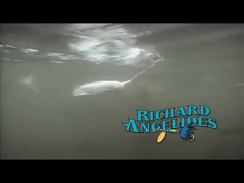 Richard Angelides in Expedition One's Gone Fishin'