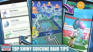 TOP 5 TIPS for *SHINY SUICUNE* RAID DAY! MAX 3000 STARDUST, RAID QUANTITY, LUCKIES & XP | Pokémon Go