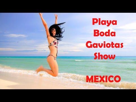 Playa, Piscina, Boda, Gaviotas, Animal Raro Conejo-Ratón y Show Mexicano ♥ Vlog México 3