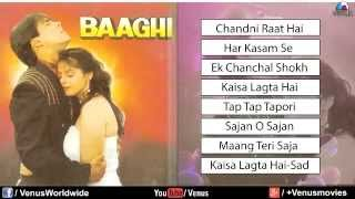 Baaghi Audio Jukebox   Salman Khan & Nagma 1990