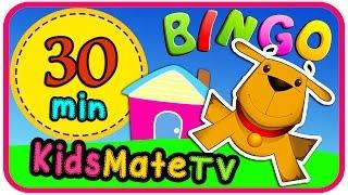 BINGO ★ And More Nursery Rhymes ★ 30 Minutes ★KidsMateTv★