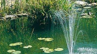 Hmonghot com construire bassin de jardin avec liner - Nettoyer les paves autobloquants ...