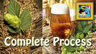 How to Brew Craft Beer at Home From Grain to Glass (Complete Process)