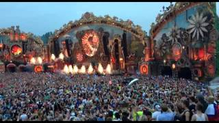 Avicii Video - Tomorrowland 2014 Avicii - Wake Me Up EN VIVO