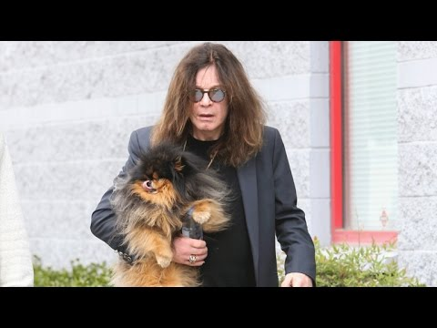 Ozzy Osbourne Not Missing, Steps Out for First Time After Split From Sharon: See the Photo