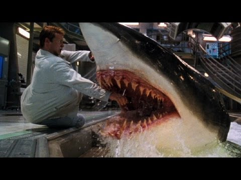 It should go without saying but: SPOILER ALERT. Well that escalated quickly. Join http://www.WatchMojo.com as we count down our picks for the top 10 unexpected movie deaths. It should go without...