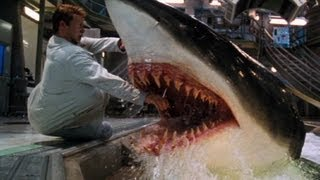 Download Top 10 Unexpected Movie Deaths 3Gp Mp4