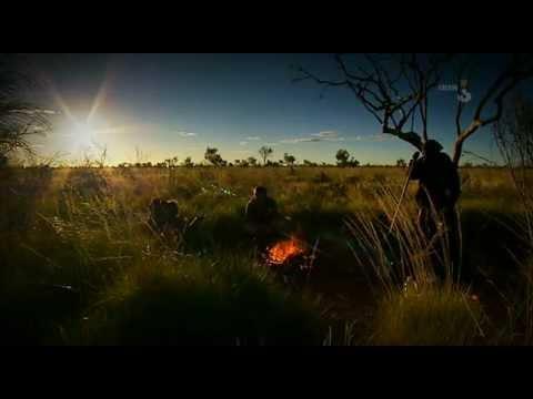 Ray Mears Wild Food - 1 Australia [LEKTOR PL].avi