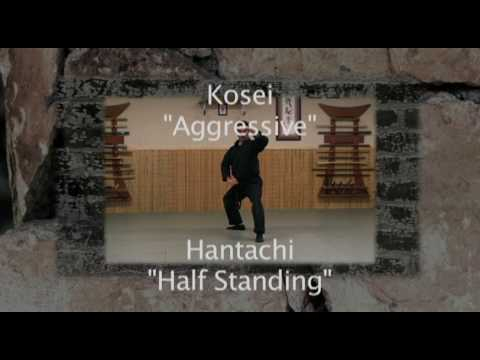 Ninjutsu Training - KAMAE DEMONSTRATION - 9TH KYU - Bujinkan Instruction Online Image 1