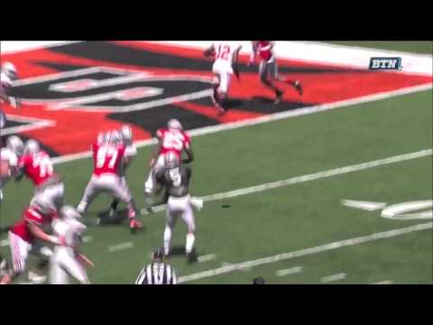 Ohio State 2013 Spring Game Highlights
