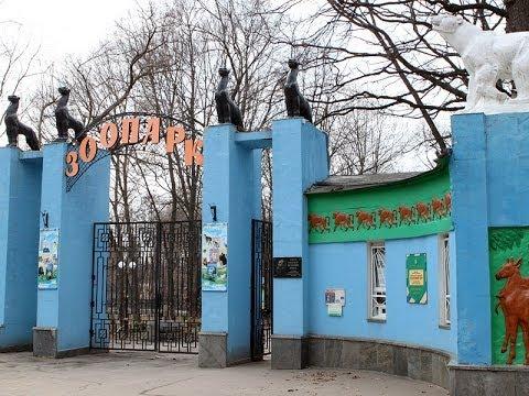 SOS! Директор зоопарка расплакался! Харьков. Robinzon.TV