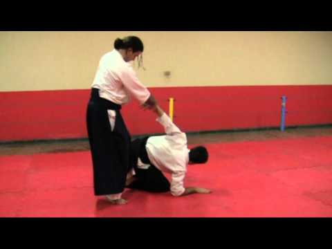 Ogawa Ryu Aikijujutsu Training Moments in Brazil Image 1
