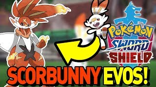 IS SCORBUNNY FAIRY TYPE?! NEW RUMORS! Scorbunny Evolution in Pokemon Sword and Shield Discussion