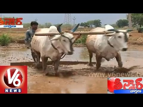 Telangana people are happy with rains in the state - Teenmaar...