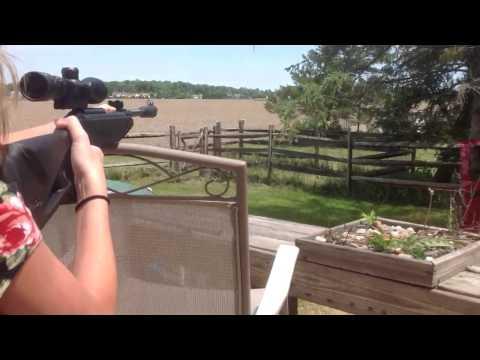 Gamo Air Rifle Silent Stalker........Shelbz