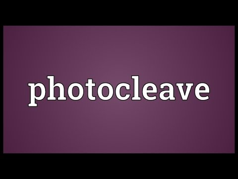 Header of Photocleave