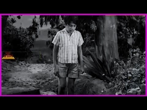 Ramu Telugu Movie Scene - Ntr , Jamuna , Pushpalatha video