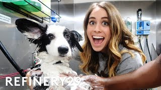 Lucie Fink Becomes A Dog Groomer | Lucie For Hire | Refinery29
