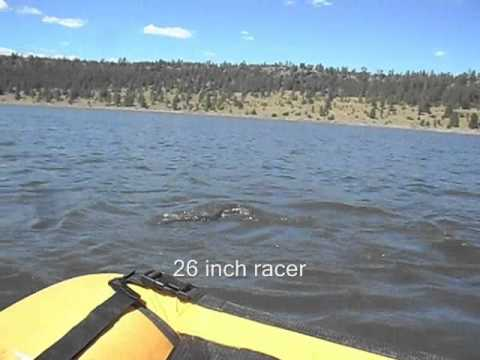 Pike Fly Fishing Fun, Lake Mary, Flagstaff Arizona