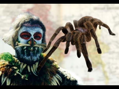 Killer Spiders Terrorize City!?!