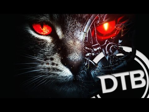 �PREMIERE】Excision & Downlink - Robo Kitty