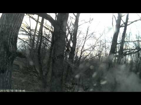 Убрался в лес