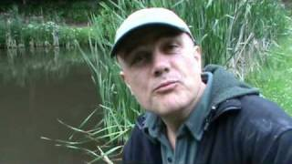 Carp, rudd, roach and tench at Gyrn Castle (2010 video 28)