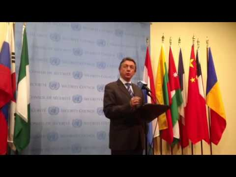 Ukraine Ambassador Sergeyev at the UN