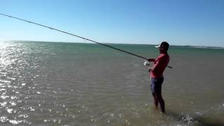 DORADA CHICOSURFCASTING, Temporada 2013, daiwa tournament hibrid 33,  HD