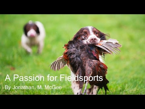A Passion for Fieldsports - Pheasant and Partridge Shooting
