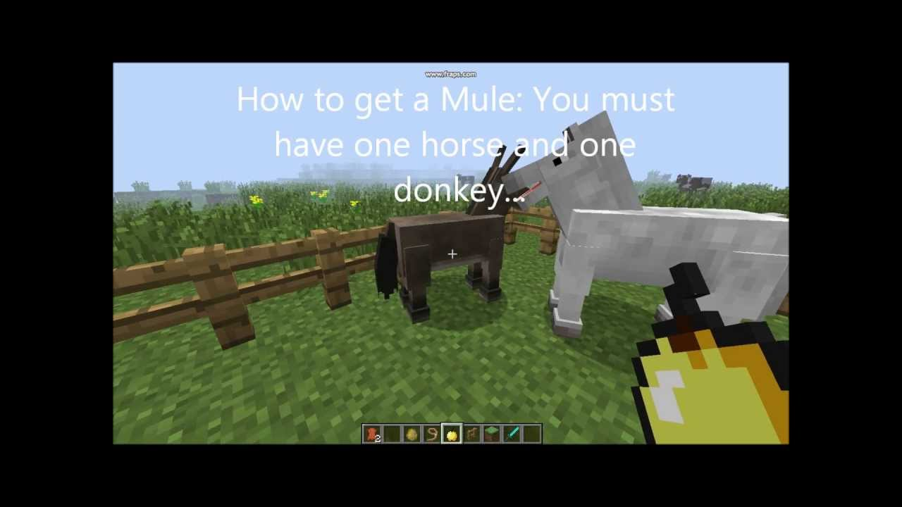 how to make horses grow faster in minecraft