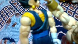 Vegetto vs broly stop motion DBZ