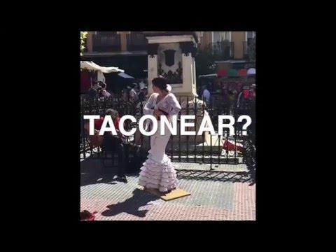 """Can you """"Taconear""""?"""