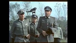 World War 2 - Partisan Assault