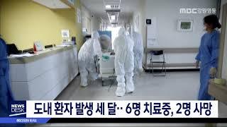 도내 환자 발생 세 달..6명 치료중, 2명 사망