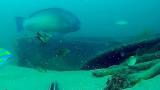 Underwater in Moreton Bay - Unknown structure west of Tangalooma