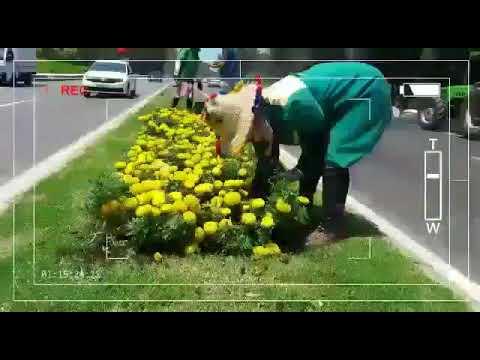شركة حديقة الأمراء بالمضيق وسائل حديثة في صيانة الحدائق والمساحات الخضراء