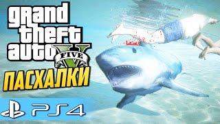 GTA 5 Пасхалки и секреты (PS4) - Играем за Акулу!